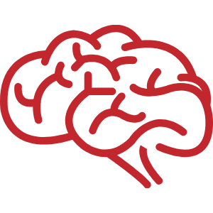 brain clipart transparent